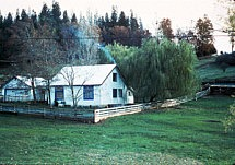 Guest House 1980s